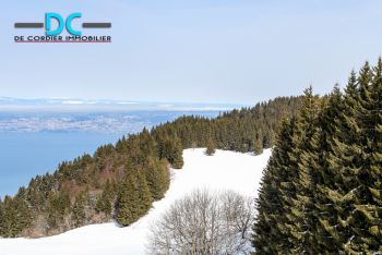 Real estate Chablais during winter season