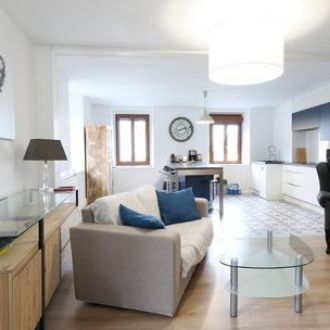 evian les bains, lake, geneva, apartment, flat evian, hyper center, to sale, to buy